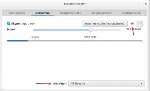 skype_audio